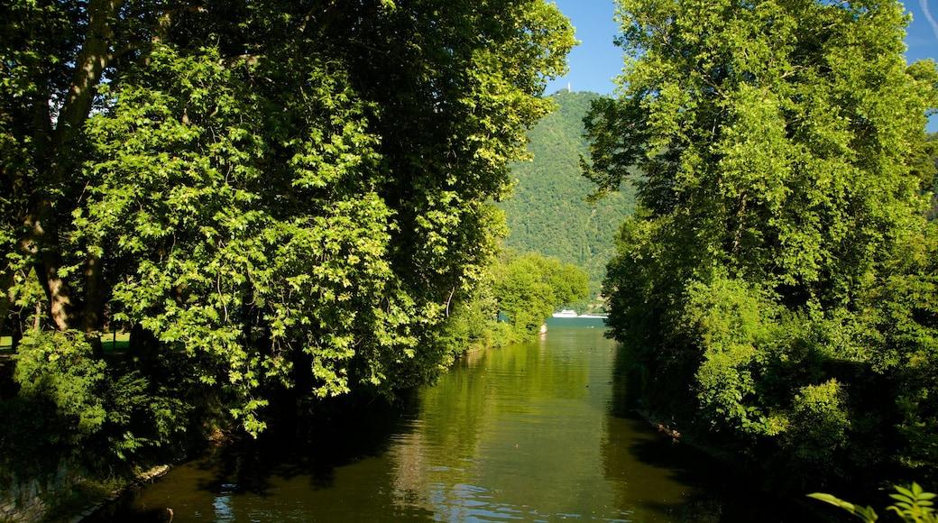 Cernobbio che include fiume o ruscello, palude e lago o sorgente d\'acqua