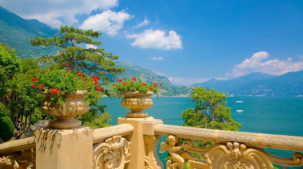 Comer See Region mit einem Ansichten, allgemeine Küstenansicht und Blumen