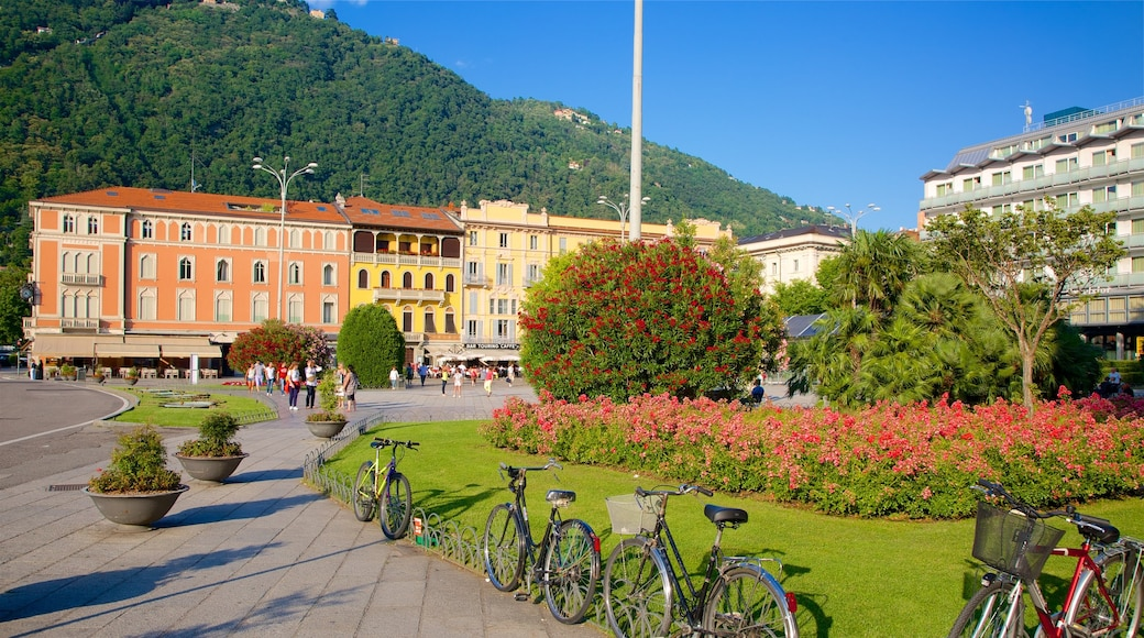 Piazza Cavour showing a park, a square or plaza and a small town or village