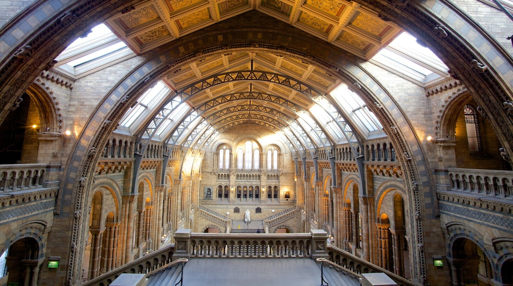 London Natural History Museum featuring heritage architecture, a church or cathedral and interior views