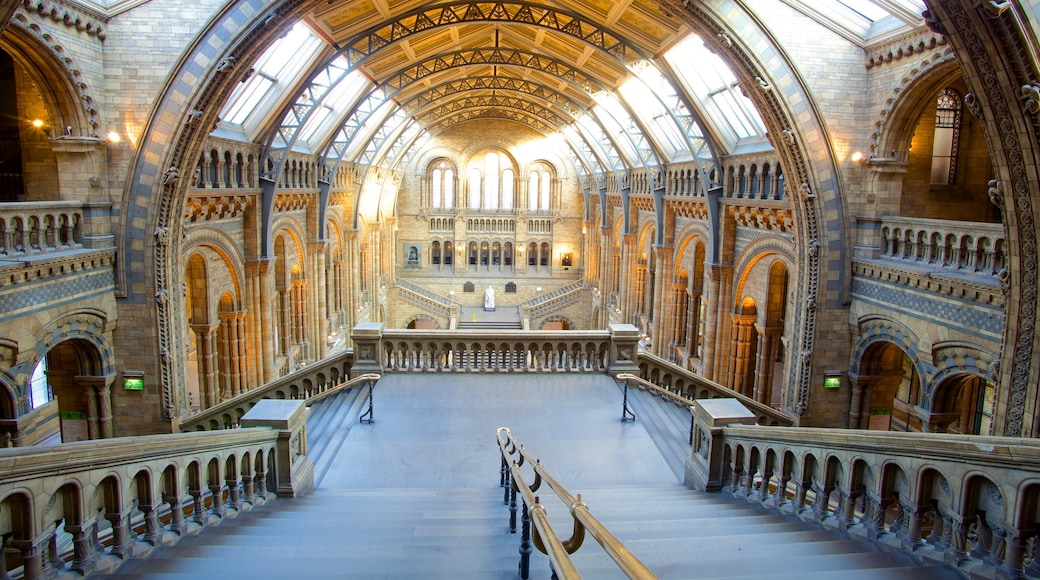 London Natural History Museum showing interior views, heritage architecture and heritage elements