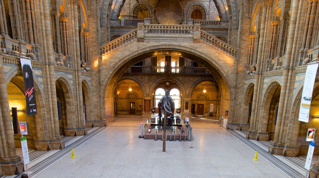 London Natural History Museum featuring heritage elements, interior views and heritage architecture