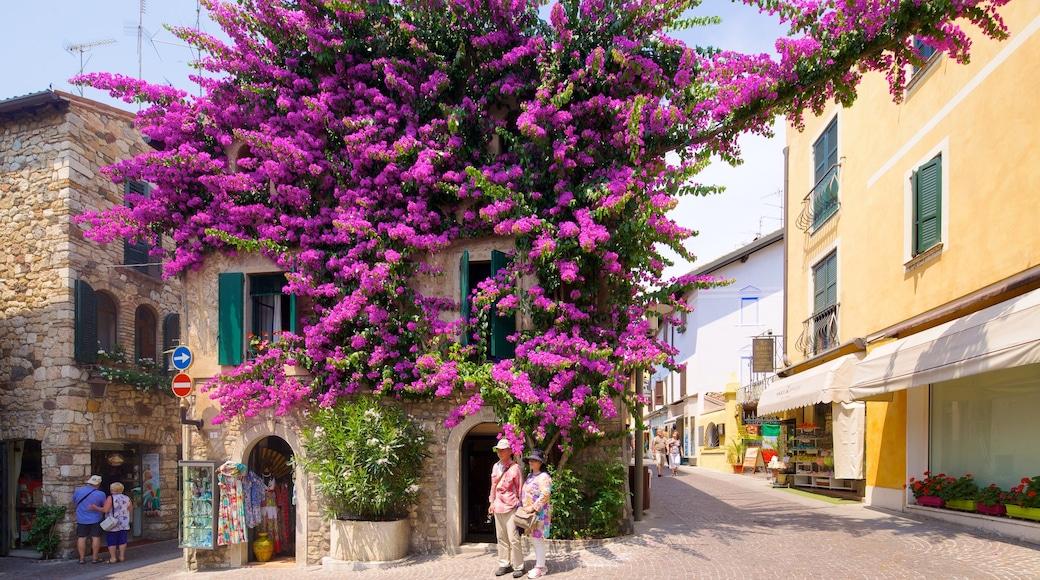 Sirmione ซึ่งรวมถึง ดอกไม้ และ เมือง