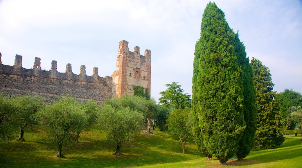 Lazise which includes a ruin, heritage elements and a garden