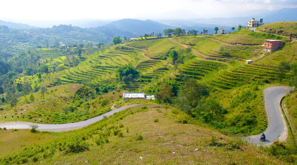 Nagarkot which includes tranquil scenes and farmland