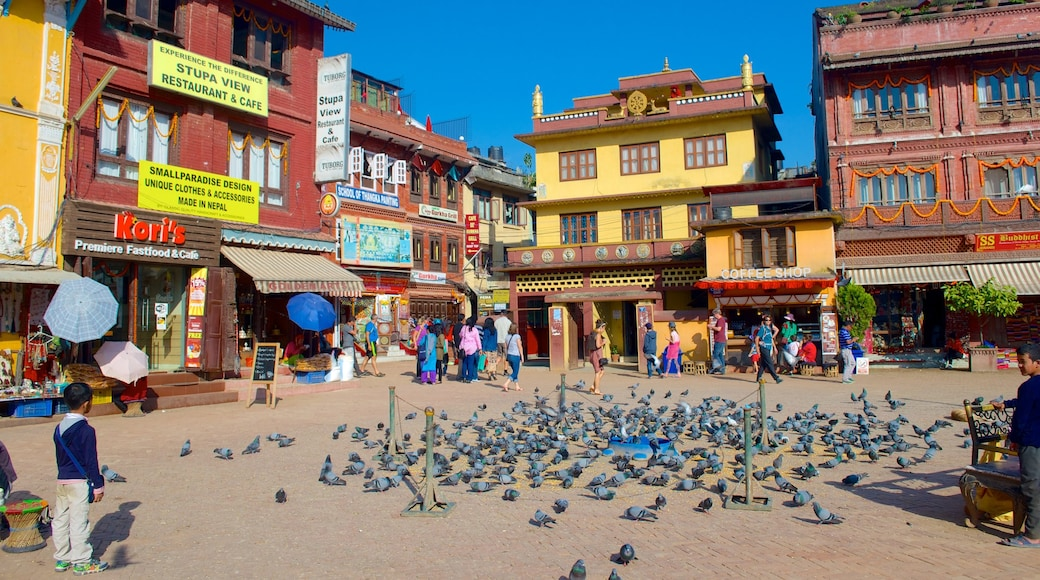 Boudhanath which includes a city