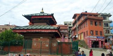 Pashupatinath Temple showing a city