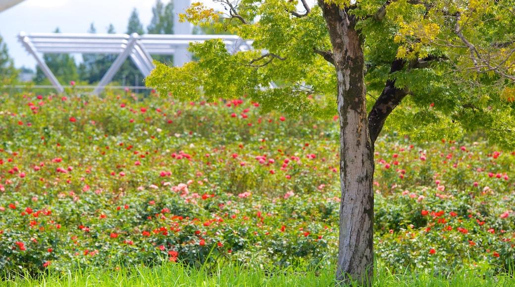 萬博紀念公園 呈现出 花園