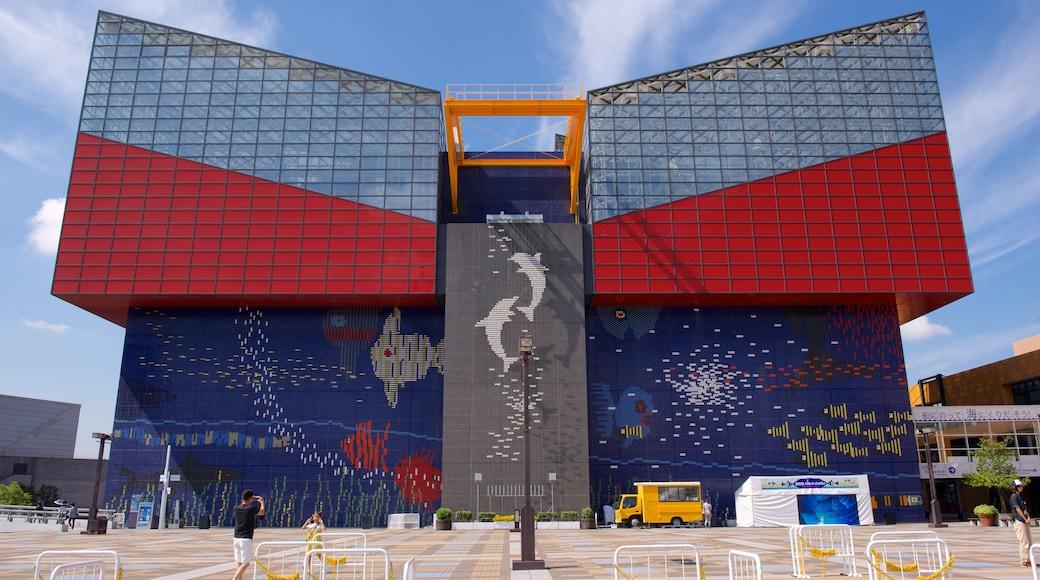Osaka Aquarium Kaiyukan which includes marine life