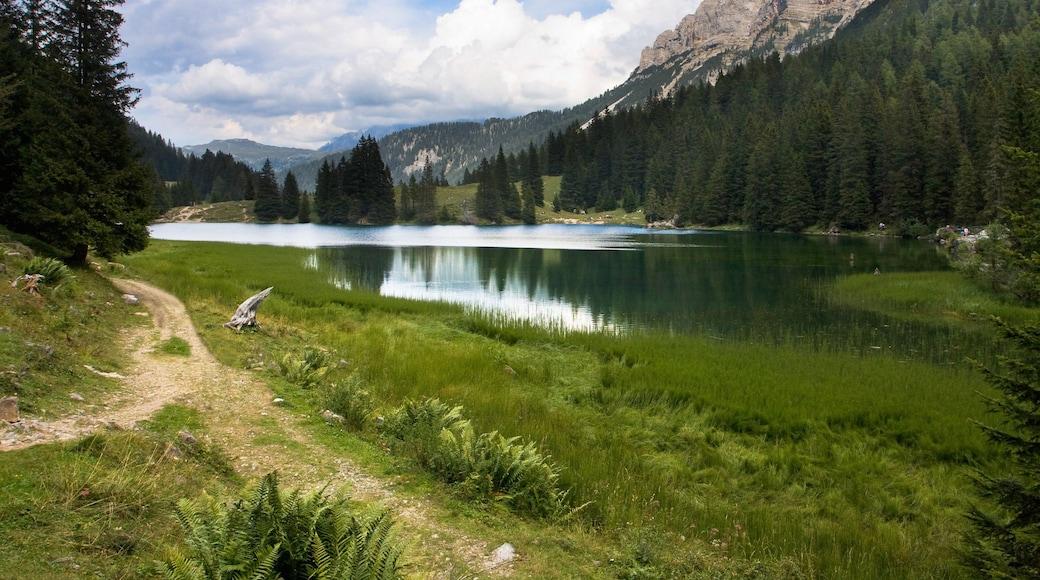 Madonna di Campiglio mostrando paesaggi rilassanti e lago o sorgente d\'acqua