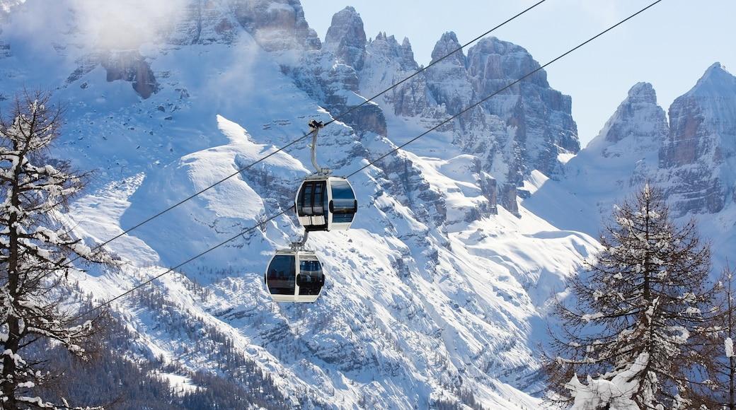Madonna di Campiglio mostrando neve, montagna e funivia