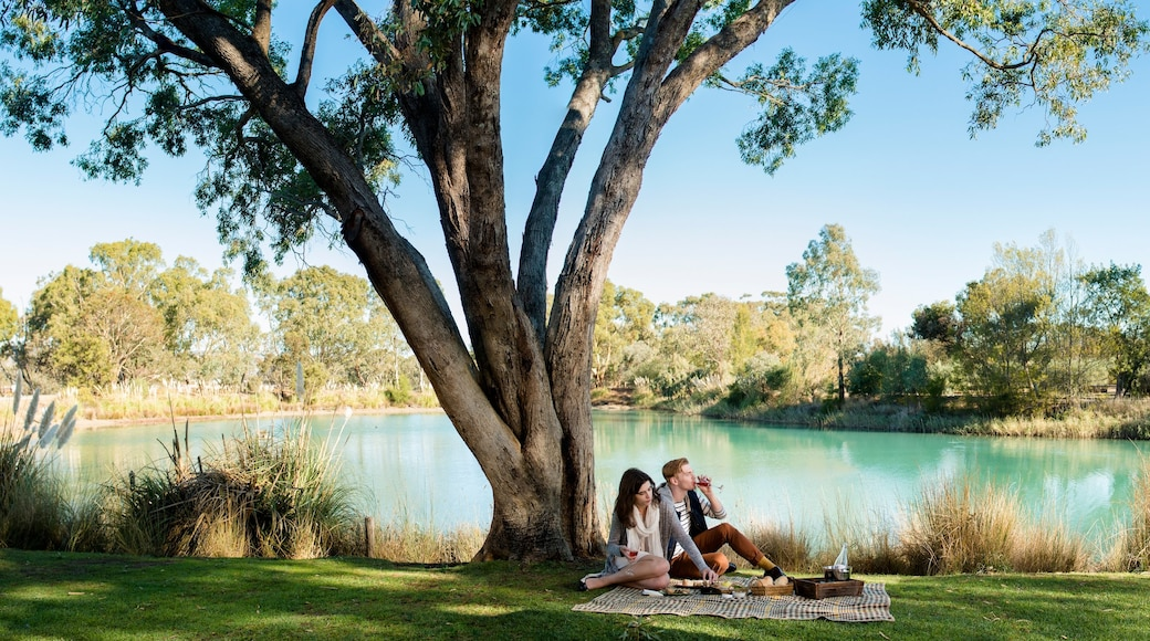 Barossa Valley showing a garden and a lake or waterhole as well as a couple