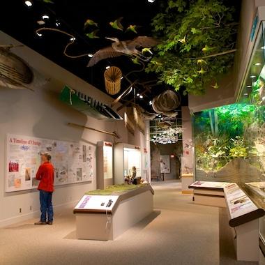 Illinois State Museum