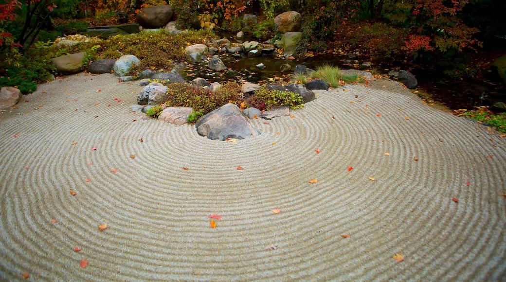 Anderson Japanese Gardens showing a garden