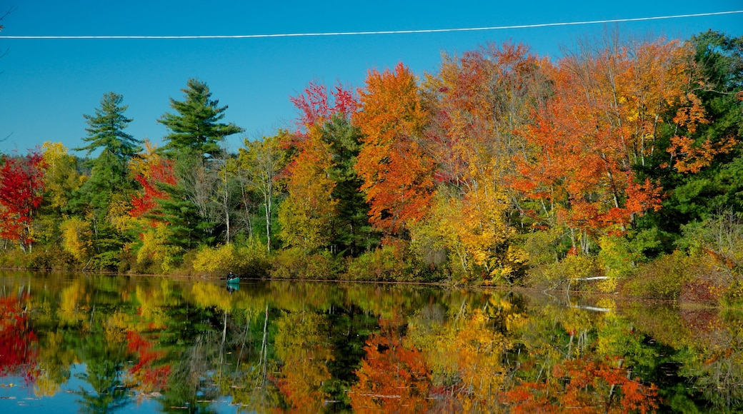 Conway featuring fall colors, a river or creek and a garden