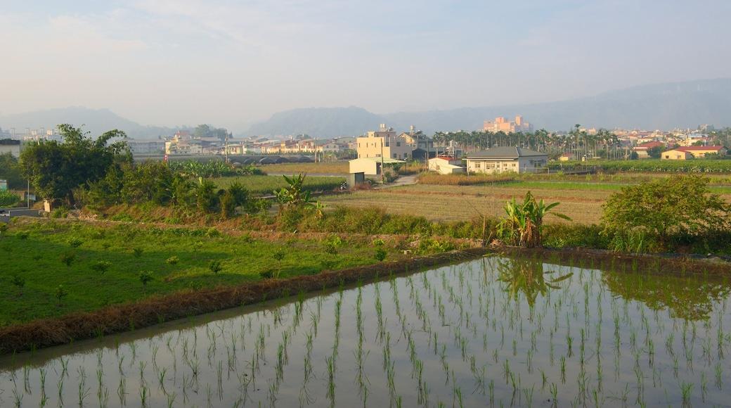 魚池 其中包括 農地 和 城市
