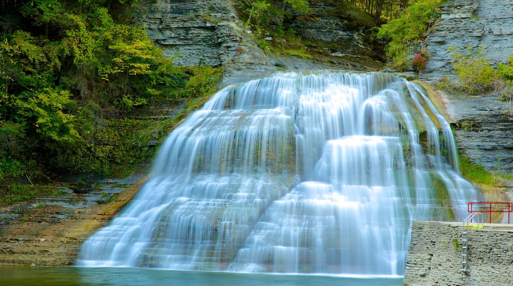 Robert H. Treman State Park which includes a waterfall