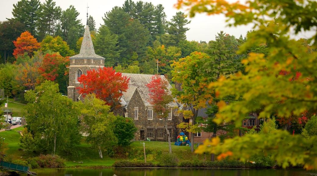 Lake Placid das einen Wälder, Herbstfarben und Haus