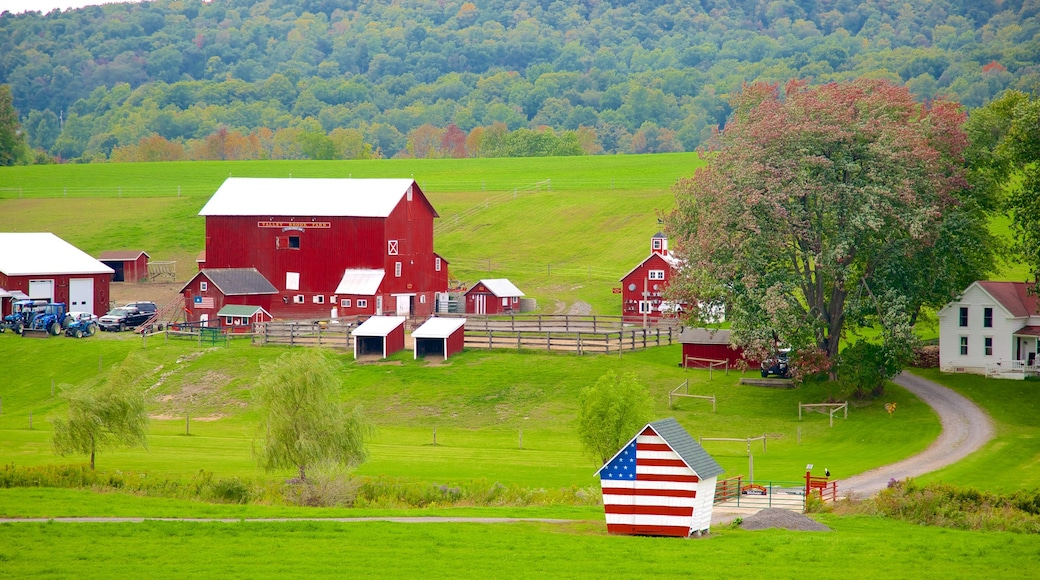 Cooperstown which includes farmland