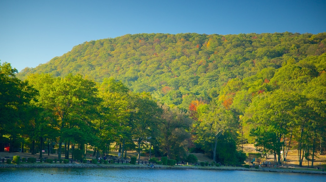 Bear Mountain State Park showing a river or creek and tranquil scenes