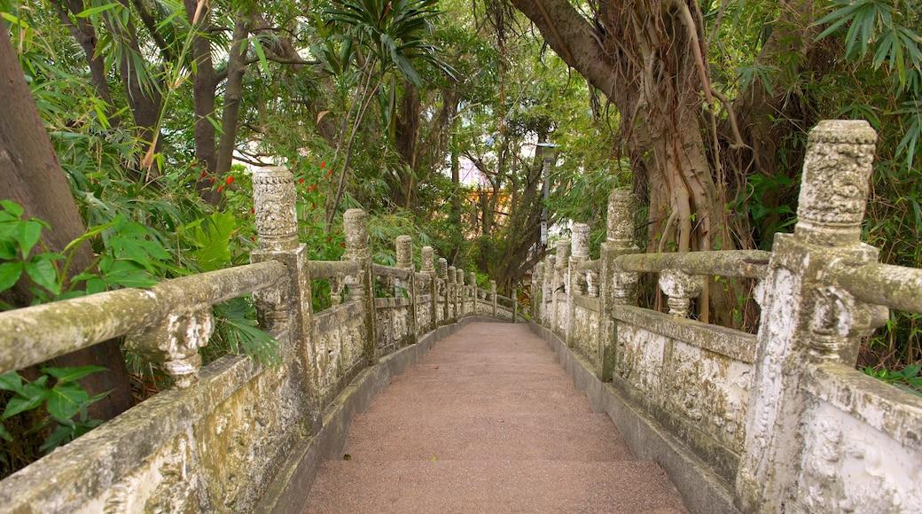 中正公園 呈现出 公園