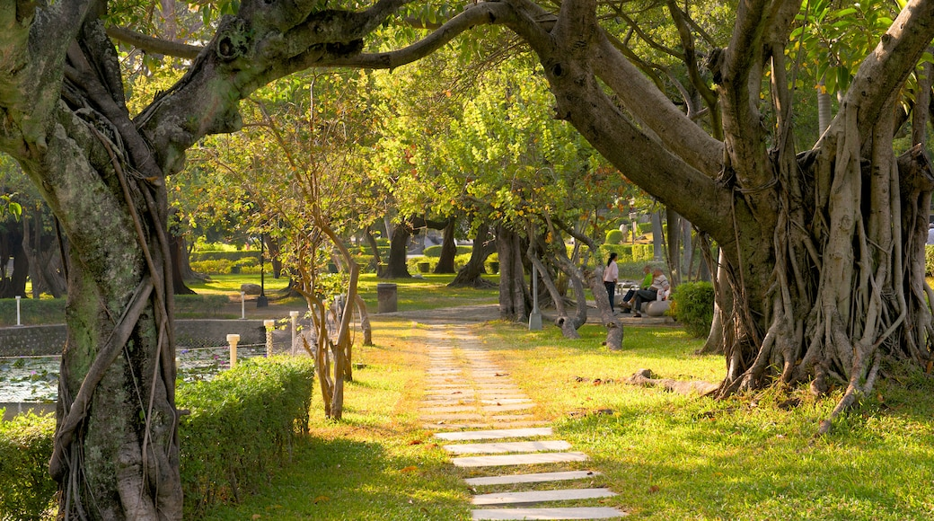 Taichung Park featuring a garden