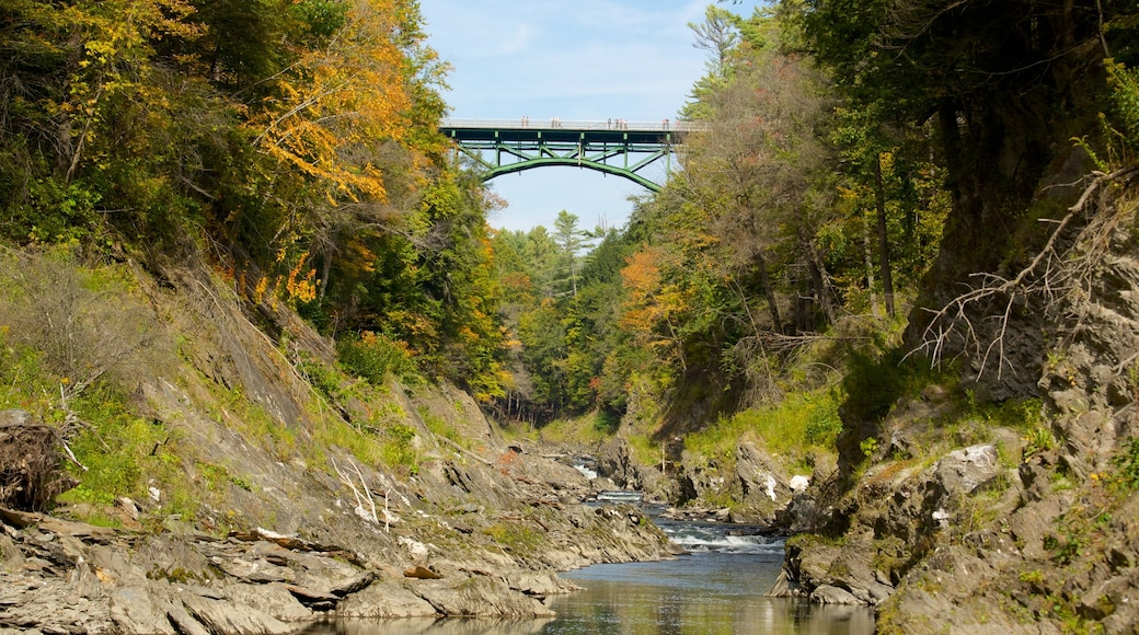 Quechee showing a bridge, a river or creek and forests