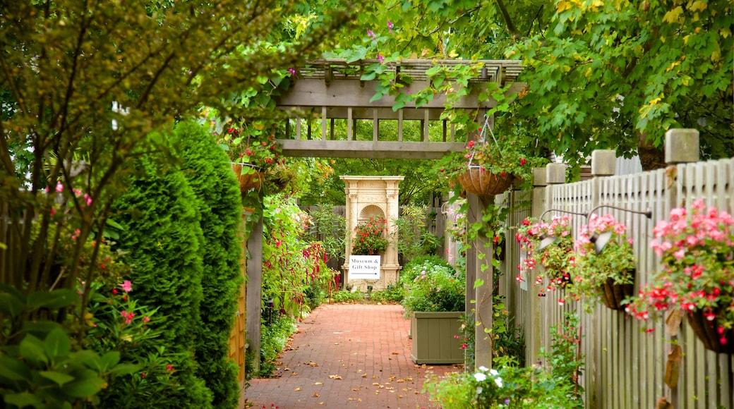 南安普敦 设有 花園