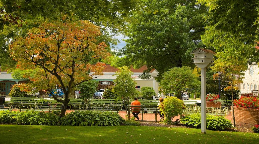Ligonier which includes a garden