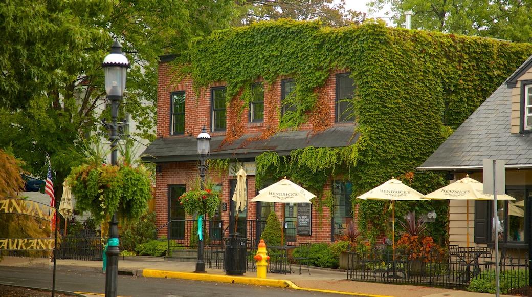 Doylestown que inclui uma cidade pequena ou vila