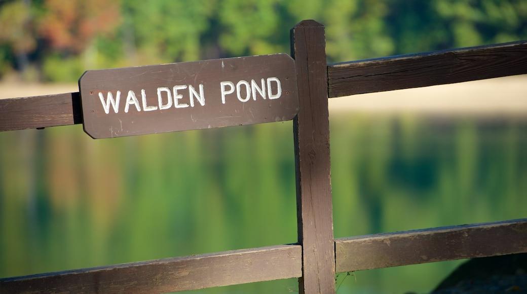 Walden Pond showing signage