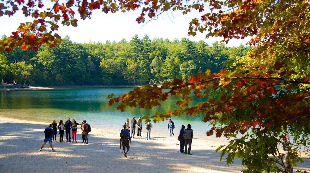 Walden Pond showing a lake or waterhole as well as a small group of people