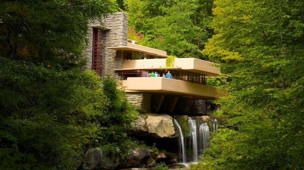 Fallingwater caracterizando uma cascata, floresta tropical e arquitetura moderna
