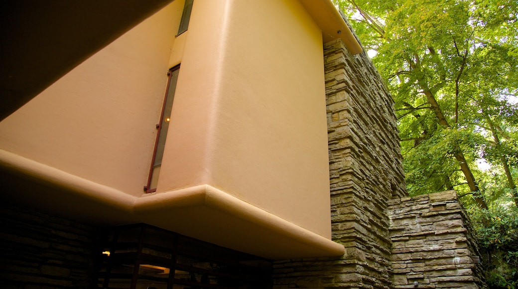 Fallingwater mostrando arquitetura moderna e florestas