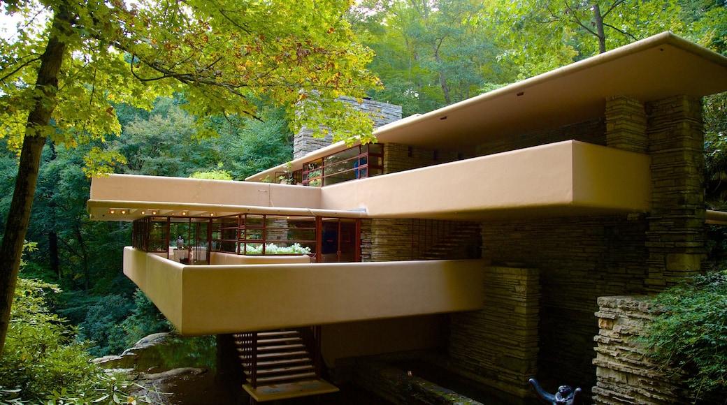 Fallingwater mostrando arquitetura moderna e floresta tropical