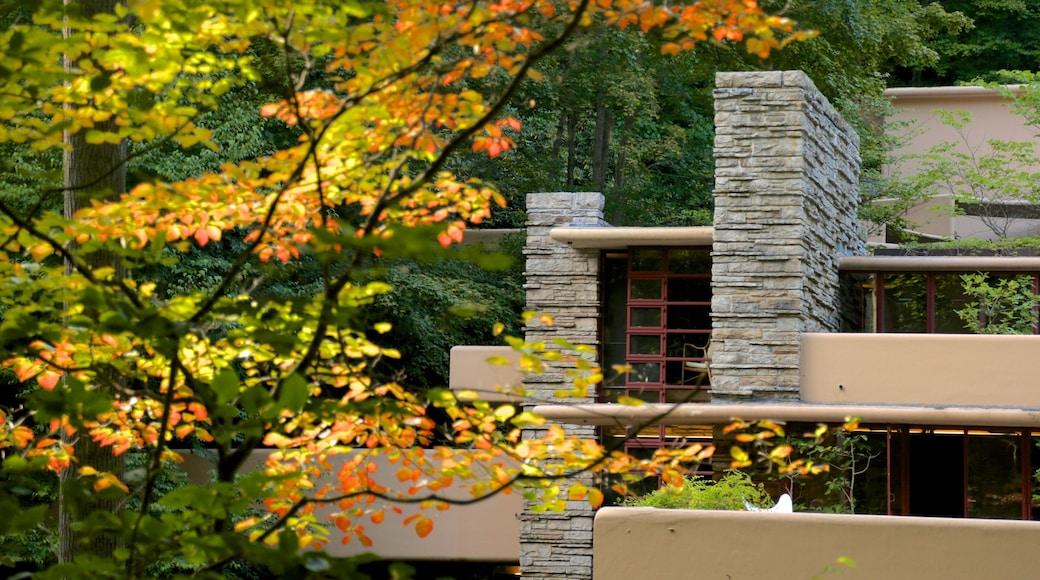 Fallingwater que inclui florestas, arquitetura moderna e folhas de outono