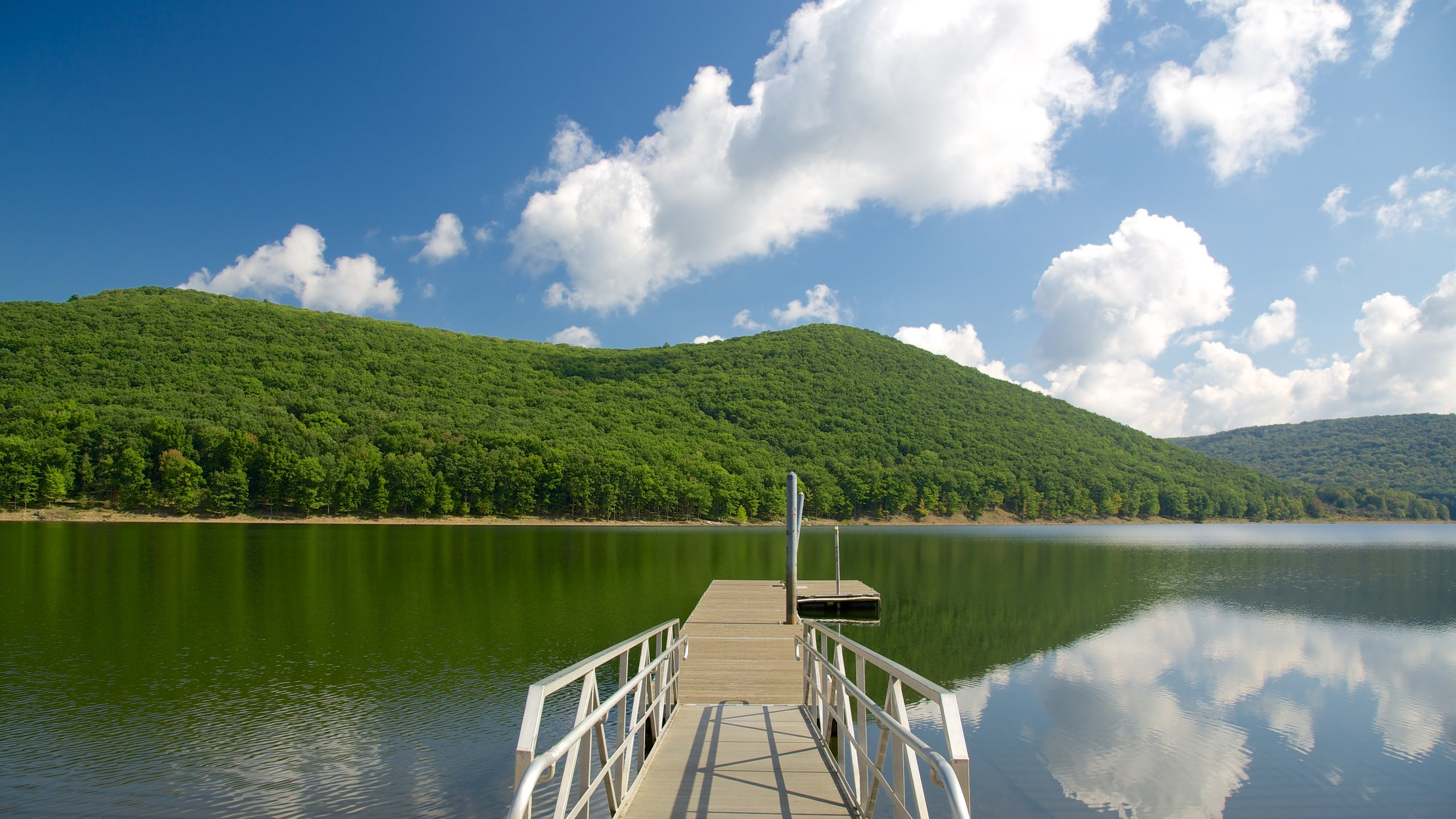 Allegheny National Forest, Pennsylvania, United States of America