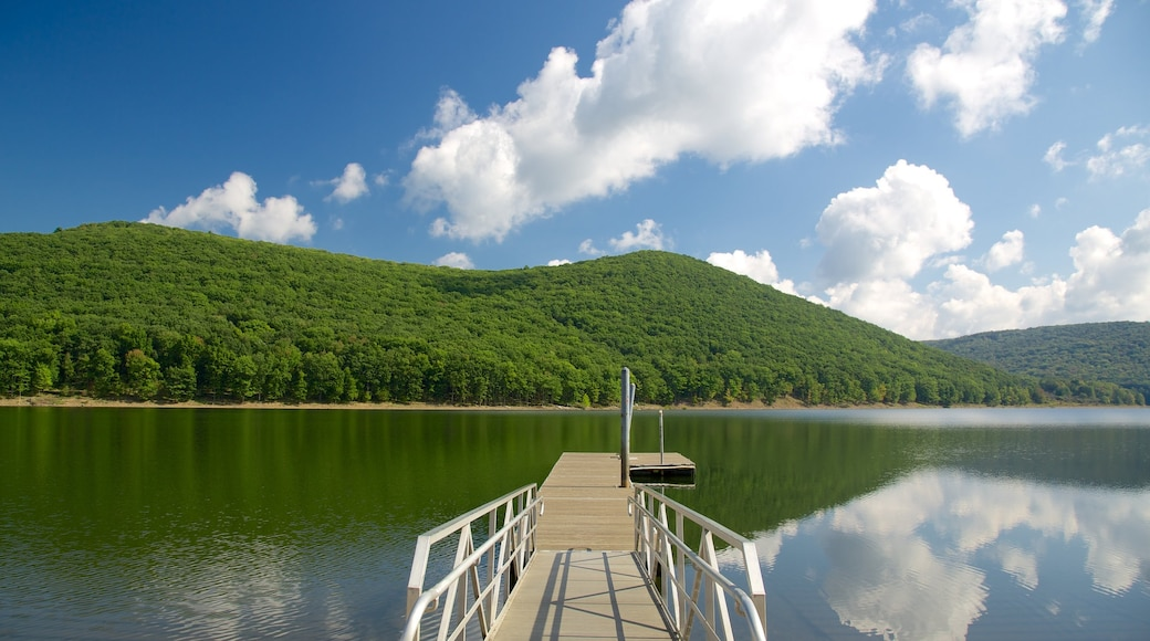 Northwest Pennsylvania which includes forests and general coastal views