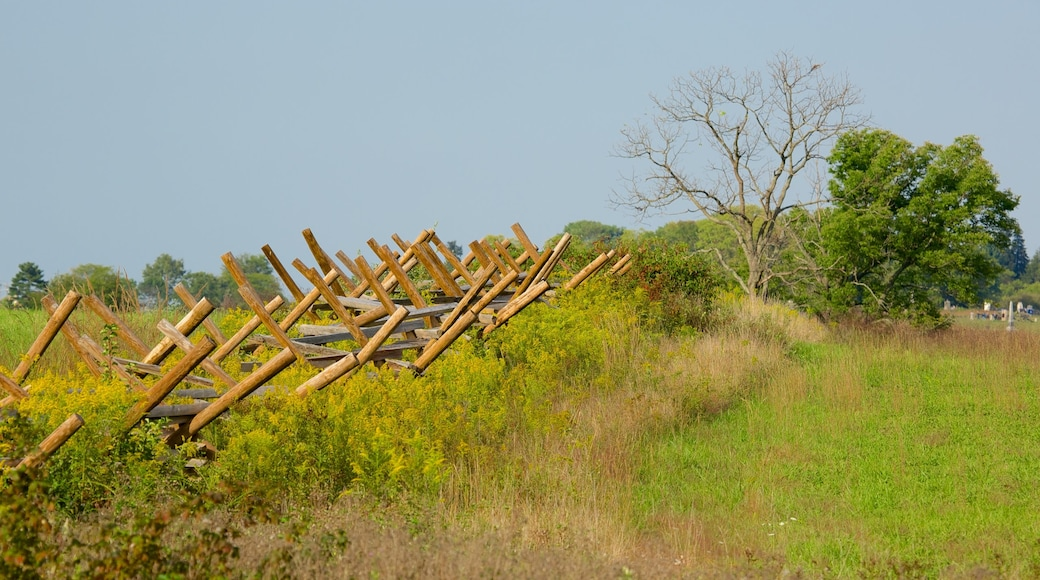 Gettysburg National Military Park featuring landscape views and farmland