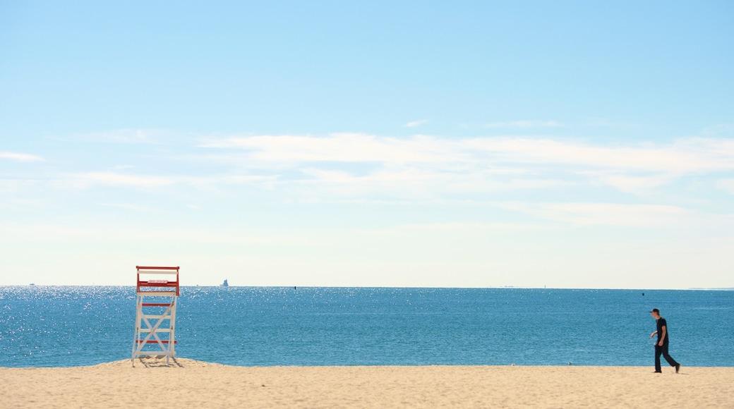 Ocean Beach Park showing a sandy beach