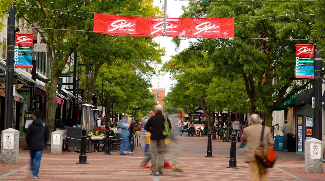 Church Street Marketplace mostrando cenas de rua e mercados assim como um grande grupo de pessoas