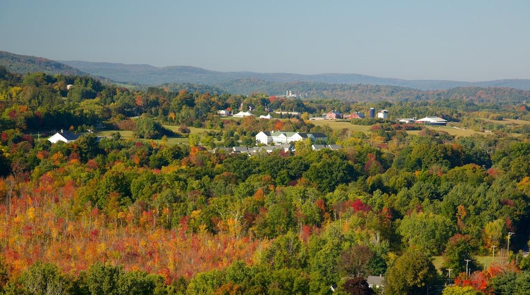 Bennington Battle Monument featuring landscape views