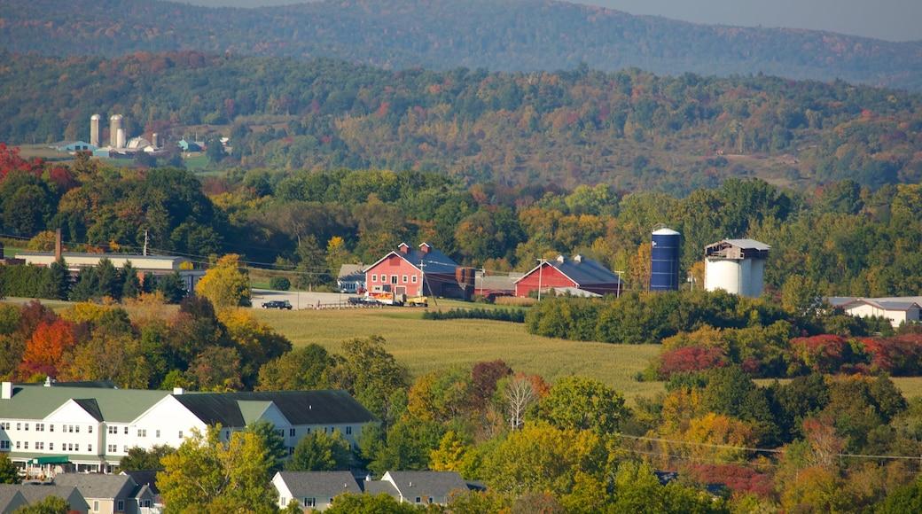 Bennington Battle Monument showing landscape views