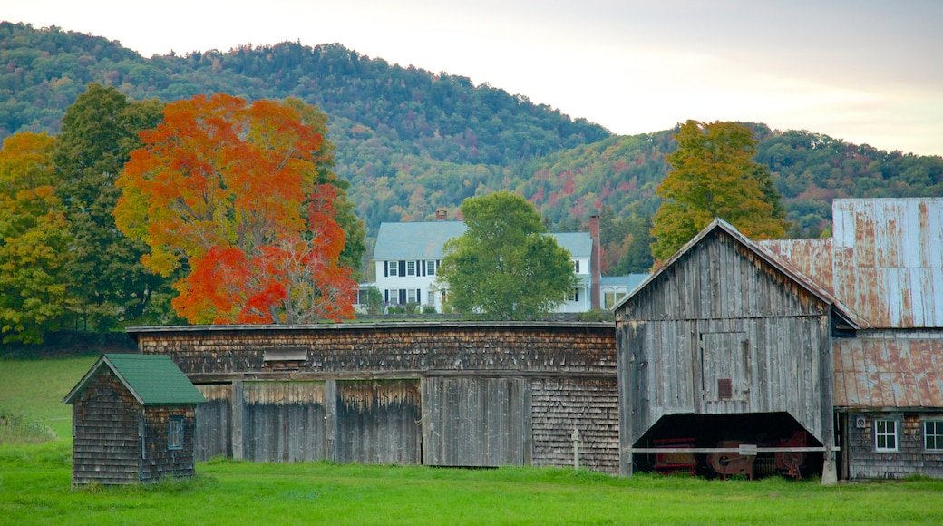 Central Vermont showing autumn leaves and farmland