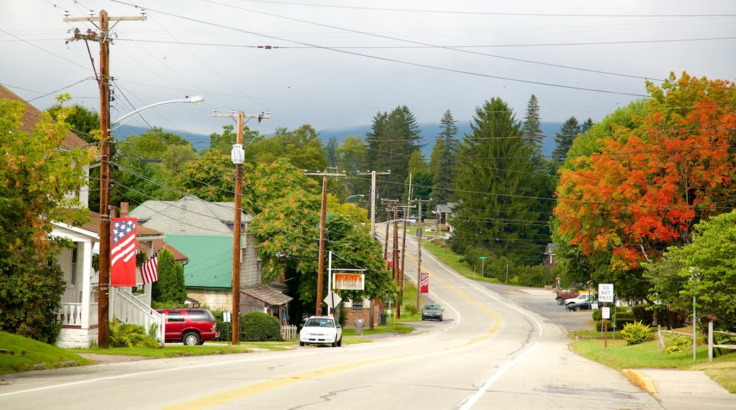 Southwest Pennsylvania showing a small town or village and fall colors