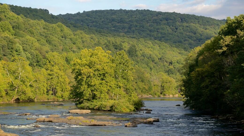 Uniontown que inclui um rio ou córrego, cenas de floresta e um jardim