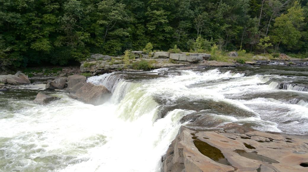 Uniontown caracterizando um rio ou córrego e córrego