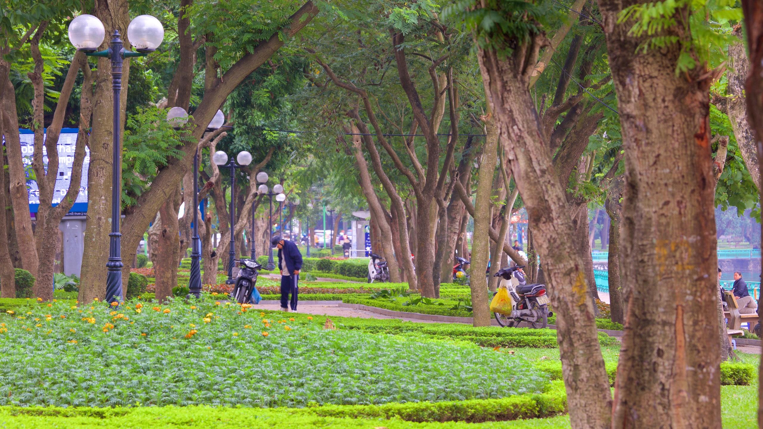 Quảng An, Hanoi, Vietnam