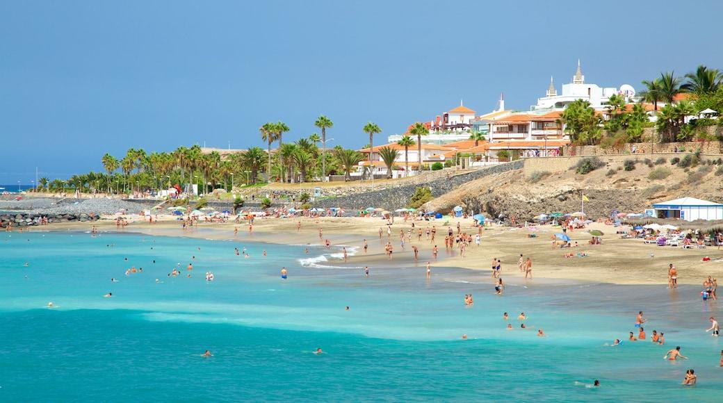 Playa del Duque das einen allgemeine Küstenansicht, Schwimmen und Strand