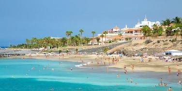 Playa Del Duque que incluye vistas de una costa, una playa y natación